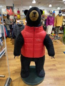 熊のお出迎え